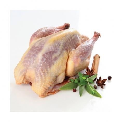 Мясо фазана (тушка 0.8-0.9 кг.)
