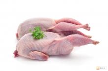 Мясо домашних перепелов, тушка (220г.+)